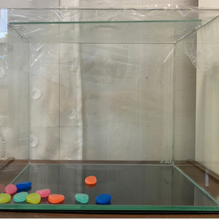 GEX ガラス水槽 オプション有