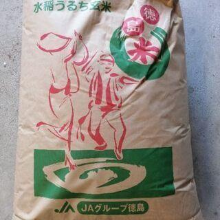 令和2年産 徳島県産キヌヒカリ 玄米30㌔