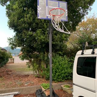 【ネット決済】LIFETIME バスケットゴール