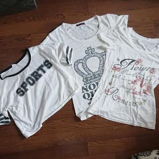 【ネット決済】Tシャツ 3枚セット