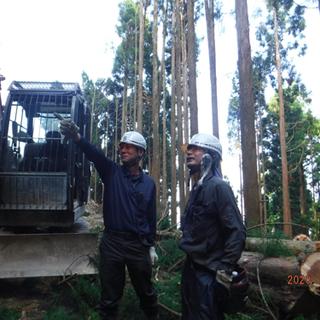 未経験の方歓迎! 林業スタッフ複数の募集です