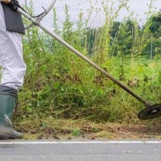 【即日対応】草刈り致します!