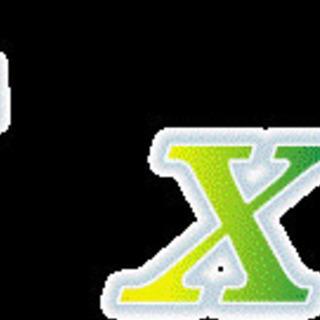 実務レベルでのExcel活用(個人・法人) ※Zoomもし…