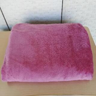 【新品】⭐CZFOX⭐毛布・ブランケット⭐ダブル⭐ダークピ…