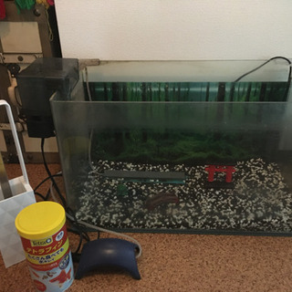【ネット決済】水槽セット (金魚用)