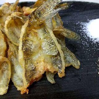 江戸前美味魚の釣り体験♪ 釣り未初級者大募集♪