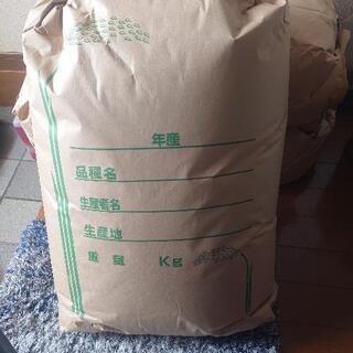 タイムセール!新米 令和3年度キヌヒカリ30kg