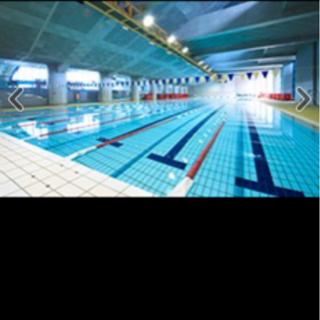 水泳 無料体験