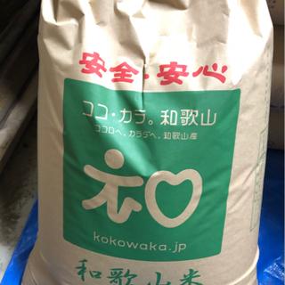 令和三年 キヌヒカリ 新米 玄米 30kg