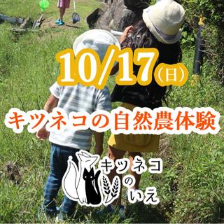10/17 三重県亀山市で自然農体験&BBQ