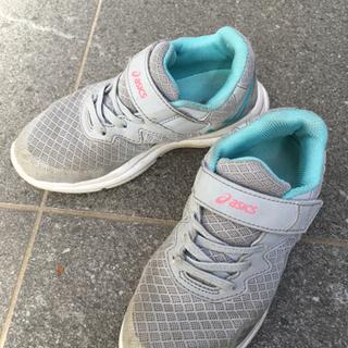 運動靴 19cm