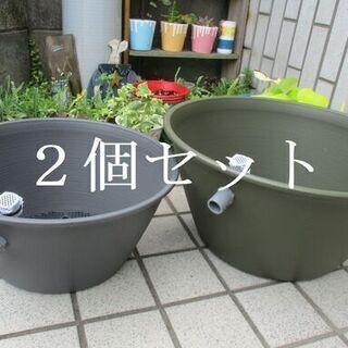 ●79 2個セット 睡蓮鉢 丸型 飼育ケース (大)(小) オー...