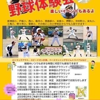 【金沢市】少年野球★新神田クラッシャーズ体験会開催!【11月】