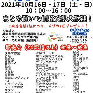 メダカすくいイベント2021年10月16日17日(土・日)恒例!...