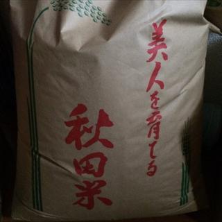 秋田県産 あきたこまち 10kg