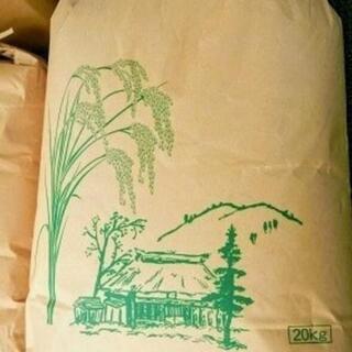 【ネット決済】一等米 新米 彩のかがやき20kg(単一原料米、令...