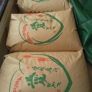 お早めに!令和3年10月収穫米 ヒノヒカリ玄米30キロ  今月末まで