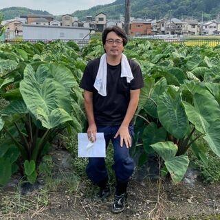 11/27(土)【無料】農業体験のワークショップ(おしごと…