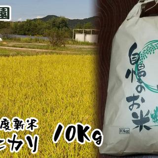 【ネット決済・配送可】令和3年度新米 ヒノヒカリ