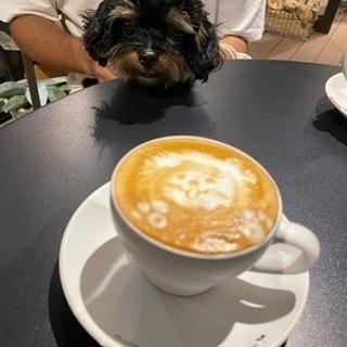 朝カフェ行きませんか?