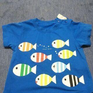 Tシャツ(魚)