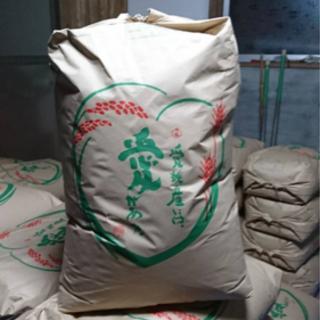 愛媛県産ヒノヒカリ~玄米30kg~