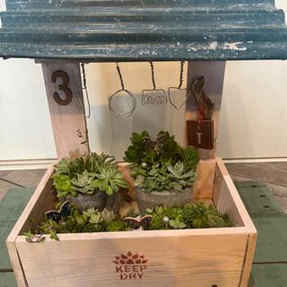 多肉植物やお花のプランター・DIY