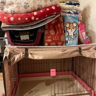 犬、猫の保護活動者さんへ、ペット用品無料でお譲りします