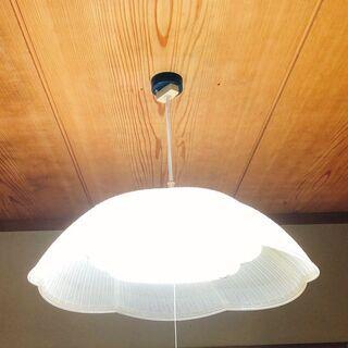 ペンダントライト 照明 電気 電球 National