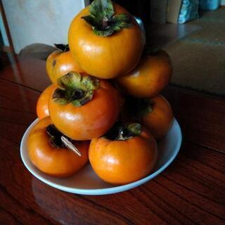 無農薬で育った柿