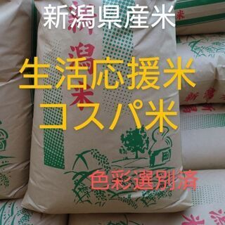 新米 令和3年度 新潟県産米 生活応援米 コスパ米 玄米3…