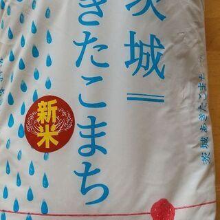 【新米】茨城県産あきたこまち 1000円
