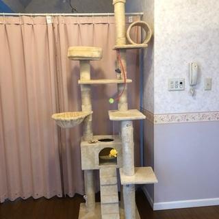 大型キャットタワー