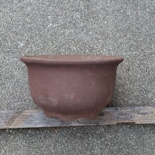 植木鉢  5号  リヒ