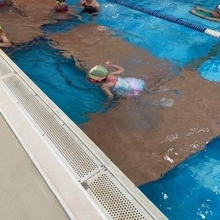 水泳教室 子供 無料体験