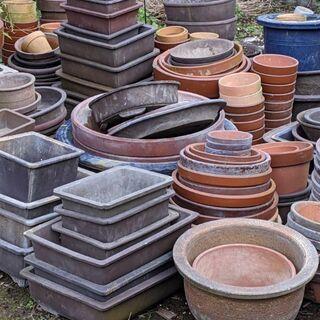 植木鉢、盆栽鉢 無料でお譲りします