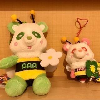 えーパンダ セット売り AAA