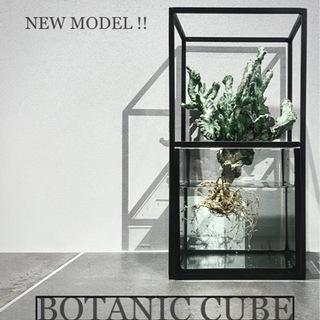 ★新モデル★Botanic Cube★水耕栽培キット 鉢 …