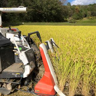 ☆ご好評☆ 兵庫県 新米ヒノヒカリ 玄米30キロ