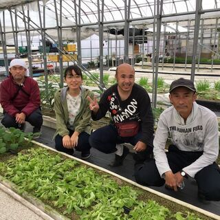 【時給1,100円以上】人と野菜に関わるハートフルな農園でのお仕事