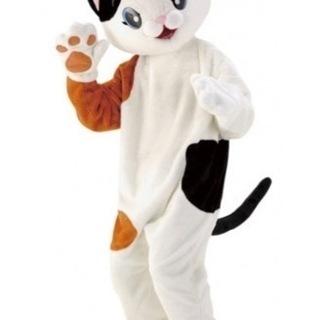 子供に大人気。猫の全身着ぐるみ