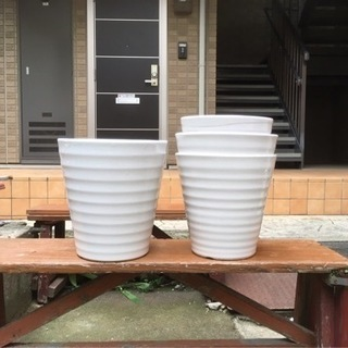 陶器鉢8から10号がメイン。プラ鉢混ざり。胡蝶蘭の入ってい…