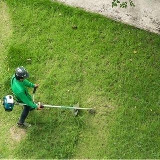 草刈り格安‼️¥1800〜‼️なんでもご相談受付します‼️