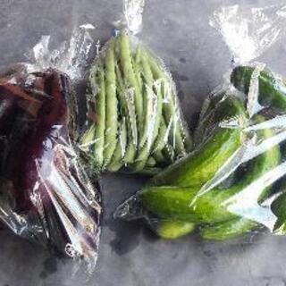 新鮮野菜300円(吉野のマルナカにて受け渡し)