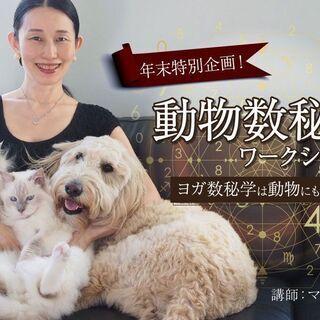 【12/5】【年末特別企画!】動物数秘学ワークショップ ヨ…