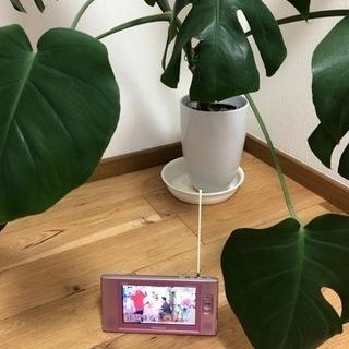 Panasonic VIERA ワンセグ   防水テレビ  お風...