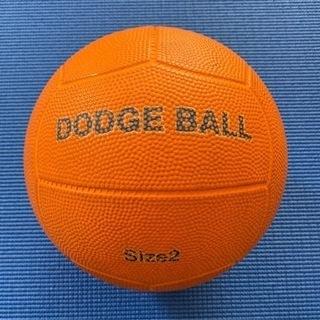 ドッジボール サイズ2