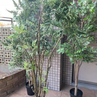 フェイク観葉植物3本セット