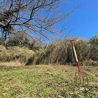鎌倉山オーガニックファーム 鎌倉山農園