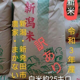【ネット決済】訳あり 新米 中米 令和3年産 新潟県産こしいぶき...